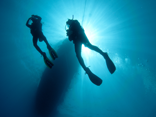 Divers Inn MX offers daily two tank dives plus free scuba diving training in the Sea of Cortez