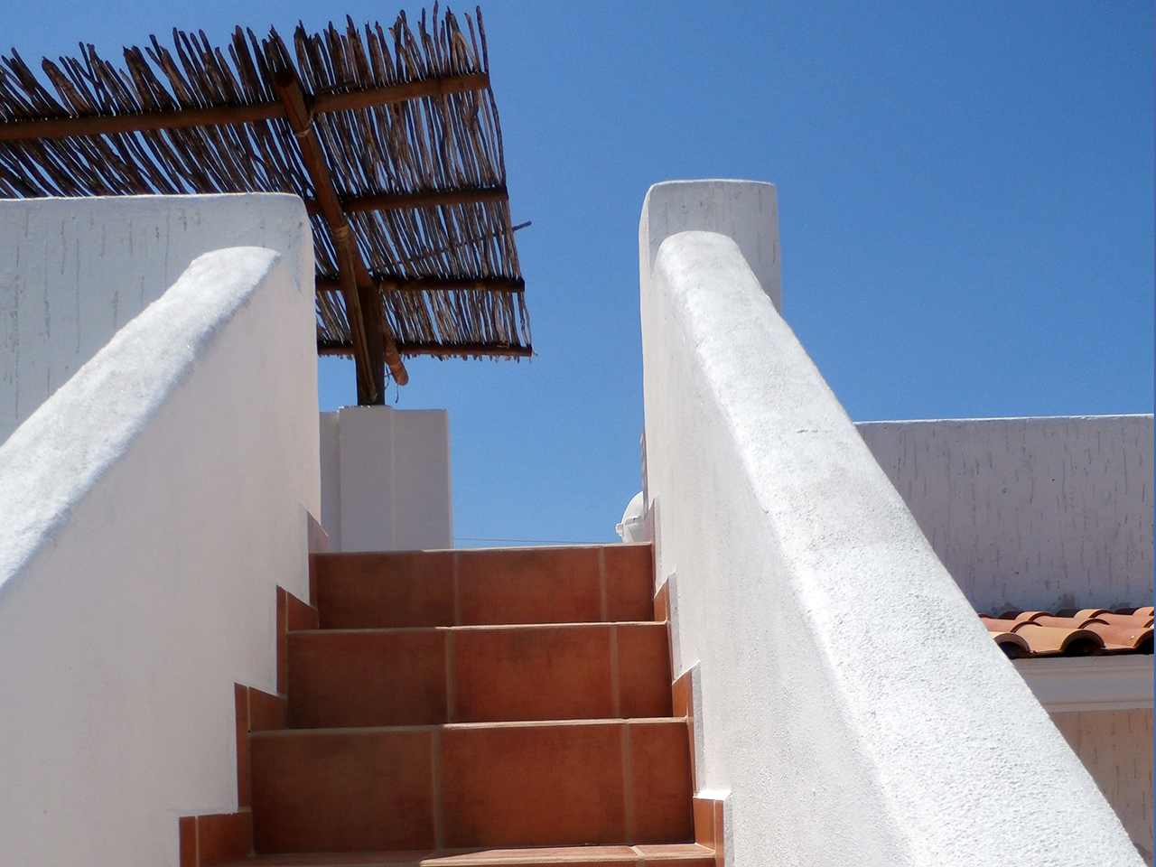 Stairs leading the the Rooftop Deck and Tequila Bar at Divers Inn MX Bed & Breakfast in La Paz, Mexico